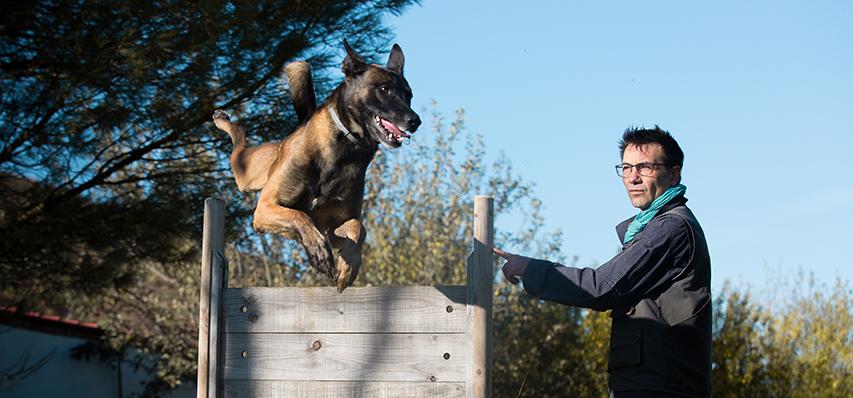 César Reyes - Adiestrador Canino